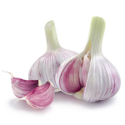 Garlic - Loose Bulb - Each