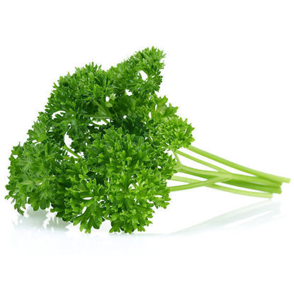 Curly Parsley Washed - 50g Bag