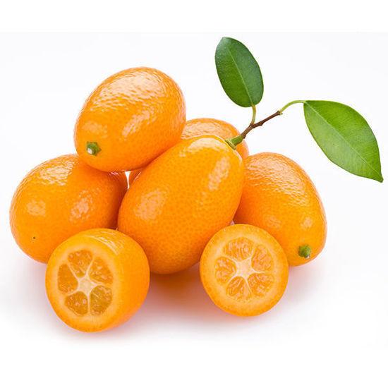 Kumquat - Box