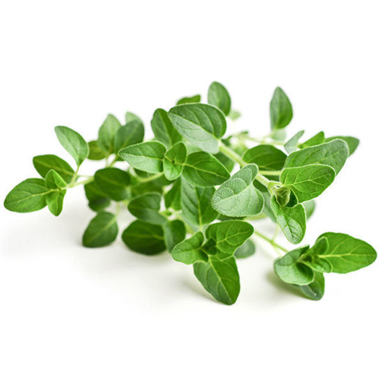 Oregano - 50g Pack