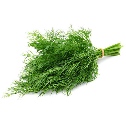 Dill - 50g Pack