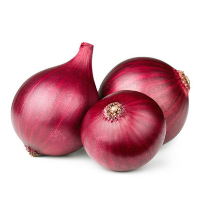 Onions - Red - New Season - 10kg