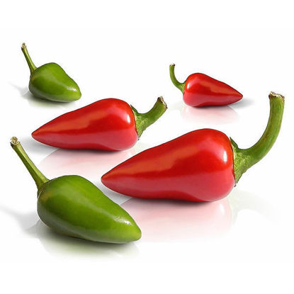 Chili Mixed - Red/Green - 1kg