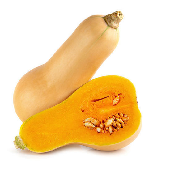 Butternut Squash - Each
