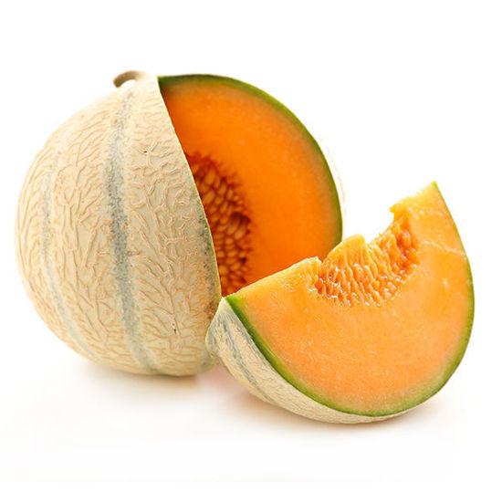 Melon - Canteloupe - Each