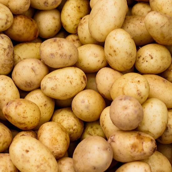 Potatoes - Frying (English) New