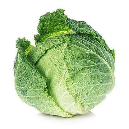 Cabbage - Savoy - Box