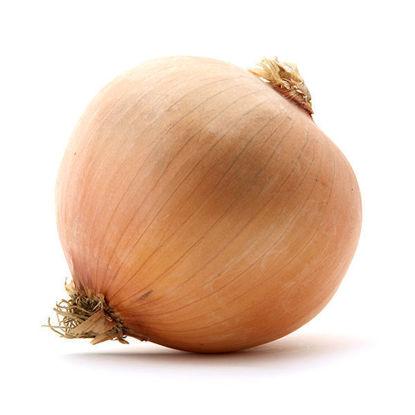 Onions - 2.5kg