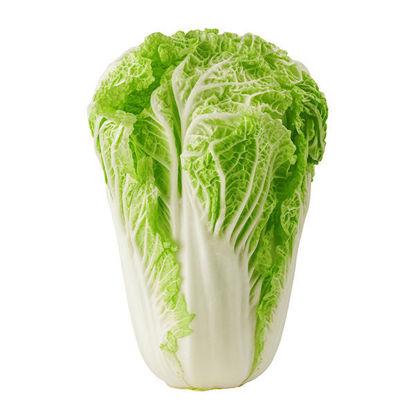 Lettuce - Chinese Leaf - Box