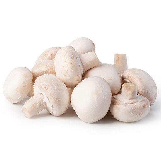 Mushrooms - Box