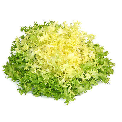 Lettuce - Frisee Endive - Each