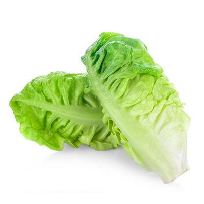Lettuce - Cos - Each