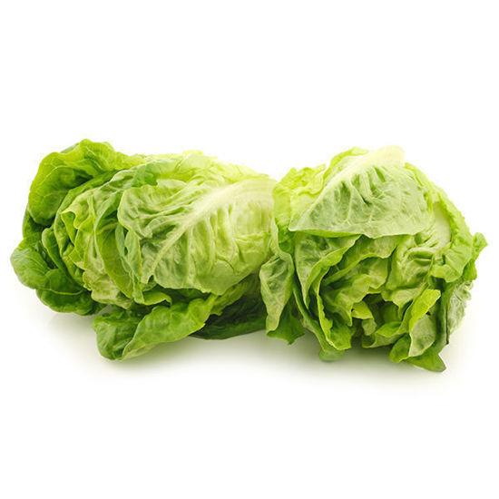 Lettuce - Little Gem - Box