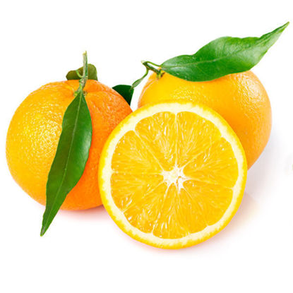 Oranges - Each