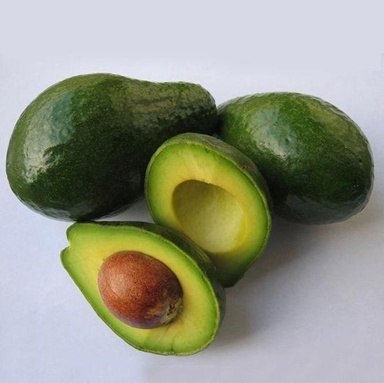 Avocados (R/E) - Single