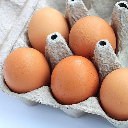 Eggs - Free Range - 15 dozen