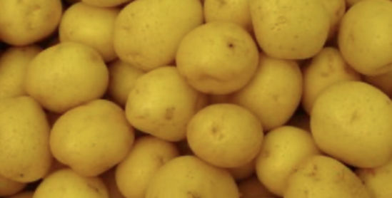 Picture of Potatoes - Baby Roast - kg