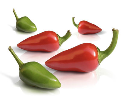 Picture of Chili Peppers - Red/Green - Each