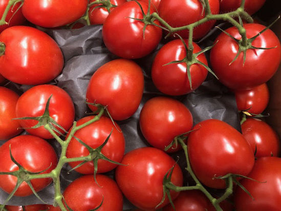 Picture of Tomatoes - Plum Vine - 1kg